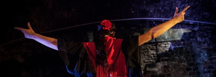 flamenco sentido